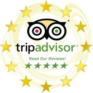 trip-advisor1 (1)